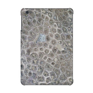 Petoskey Stone, Pure Michigan! iPad Mini Retina Covers