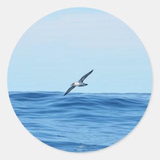 Petrel In Flight Classic Round Sticker