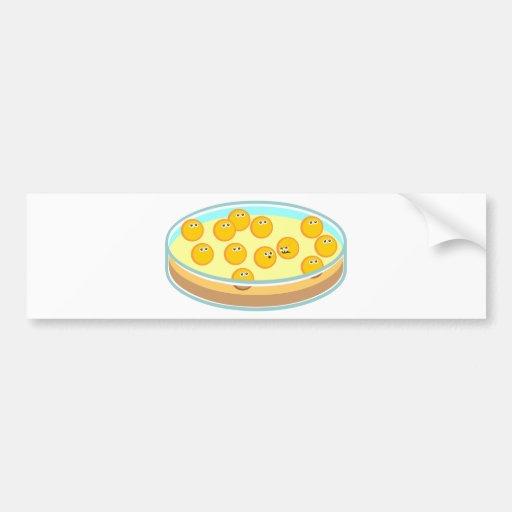 Petri Dish MRSA Bumper Sticker