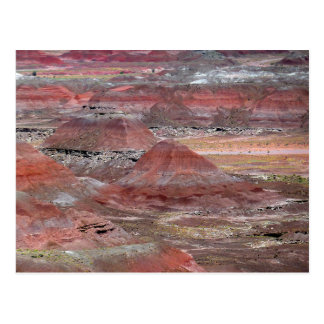 Petrified Forest 2 Postcard
