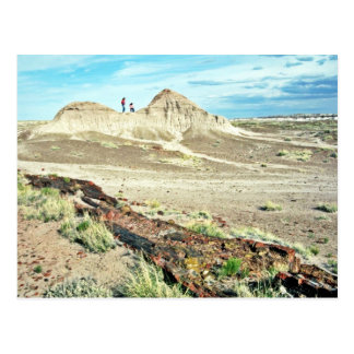 Petrified Forest - Desert National Park Postcard