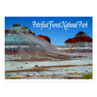 Petrified Forest National Park, Arizona  Postcard