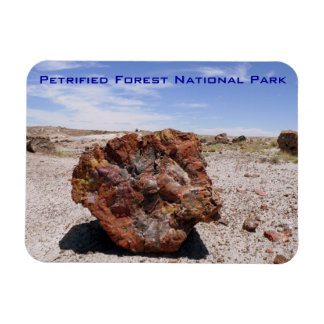 Petrified Forest National Park Rectangular Photo Magnet