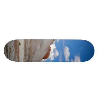 PETRIFIED FORREST TEPEES SKATE BOARDS