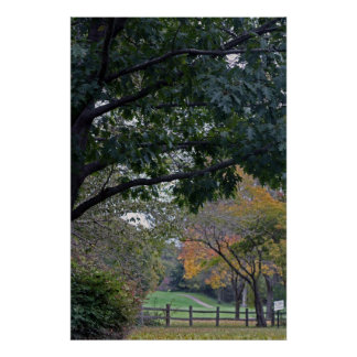 Petrifying Springs Golf Course In Autumn Poster