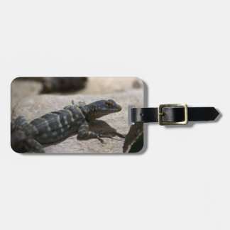 Petrosaurus thalassinus luggage tag