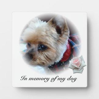 Pets Display Plaques
