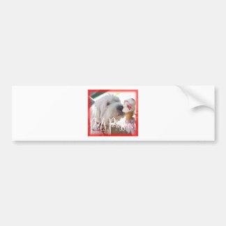 Pets Passion Bumper Sticker
