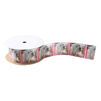 Pets Passion Satin Ribbon