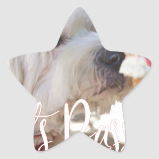 Pets Passion Star Sticker