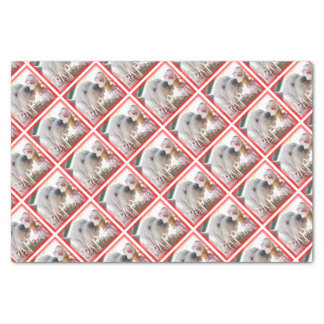 Pets Passion Tissue Paper