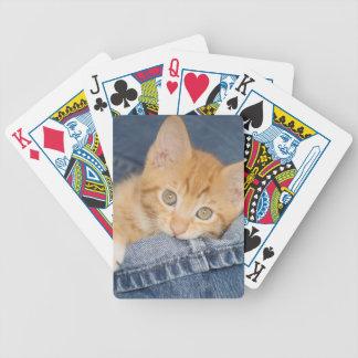 petstockimages__RI_0831H Bicycle Playing Cards