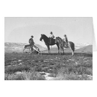 Petting Antelopes. Card