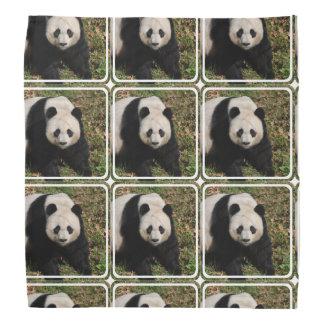 Petulant Panda Bear Head Kerchiefs
