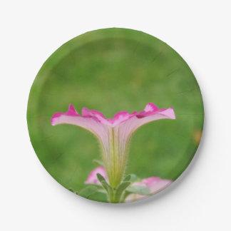 Petunia Profile 7 Inch Paper Plate