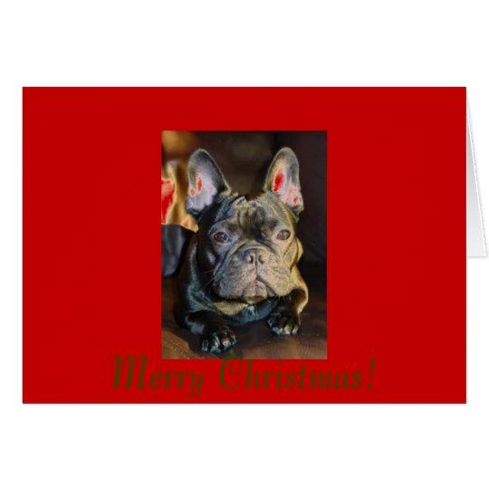 petunia signature 11 28 06, Merry Christmas! Card