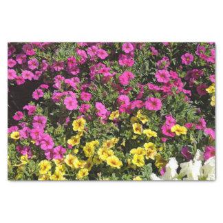 Petunia Tissue Paper