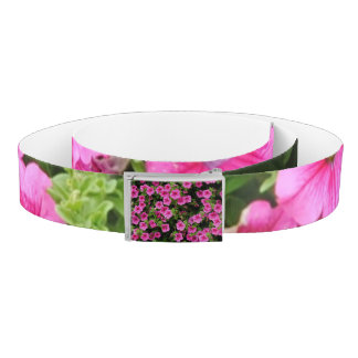 Petunias and lawn belt