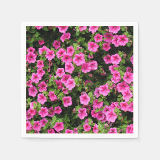 Petunias and lawn paper napkins