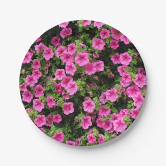 Petunias and lawn paper plate