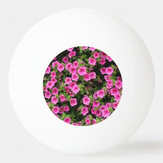 Petunias and lawn ping pong ball