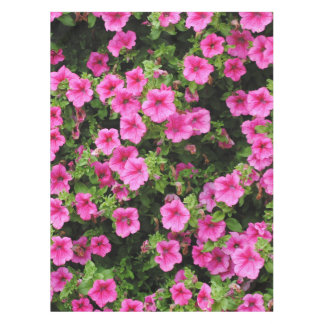 Petunias and lawn tablecloth