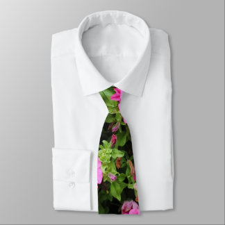 Petunias and lawn tie