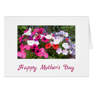 Petunias Pink and White Flower Mother's Day Card