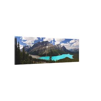 Peyto Lake in Summer Canvas Print