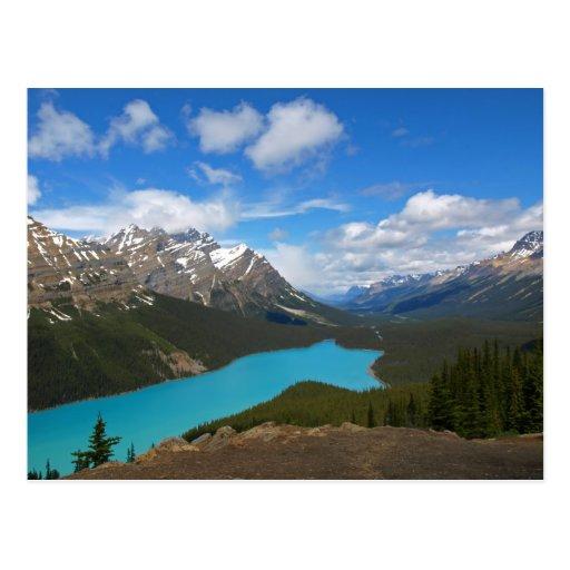 Peyto Lake (Postcard)