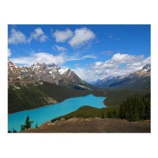 Peyto Lake (Postcard) Postcard