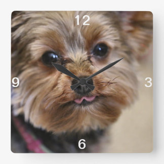 Pfft! Square Wall Clock