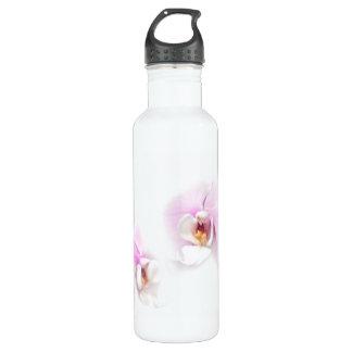 Phalaenopsis Hilo Lip Flower Duo 710 Ml Water Bottle