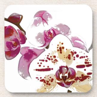 Phalaenopsis Orchid Flower Bouquet Beverage Coaster