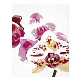 Phalaenopsis Orchid Flower Bouquet Letterhead