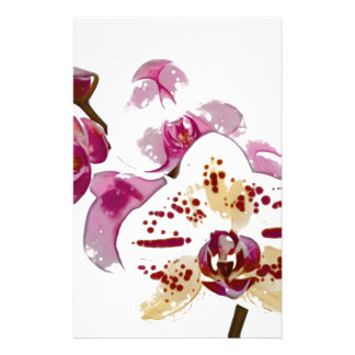 Phalaenopsis Orchid Flower Bouquet Stationery