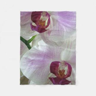 Phaleonopsis Orchids Fleece Blanket