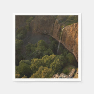 Phantom Falls Disappearing Act, Chico CA Disposable Napkins