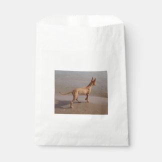 Pharaoh_Hound full.png Favour Bag