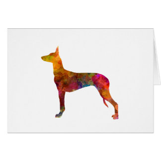 Pharaoh Hound in watercolor Card