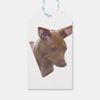 Pharaoh_Hound.png Pack Of Gift Tags