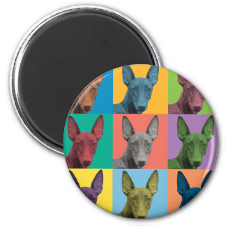 Pharaoh Hound Pop-Art Magnet