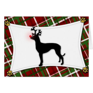 Pharaoh Hound Reindeer Christmas Card