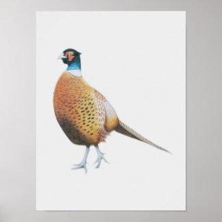 Pheasant 2012 poster