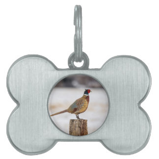Pheasant Pet Name Tag