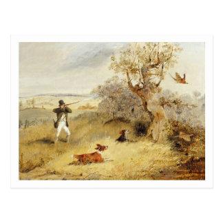 Pheasant Shooting (oil on canvas) 2 Postcard