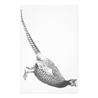 Pheasant Sketch Stationery