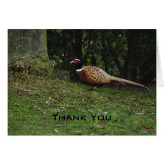 Pheasant Thank You Card