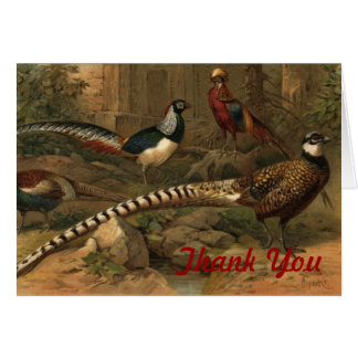 Pheasant thank you note card