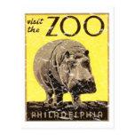 Philadelphia Zoo-Hippo Postcard